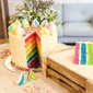 Learn to bake a rainbow cake