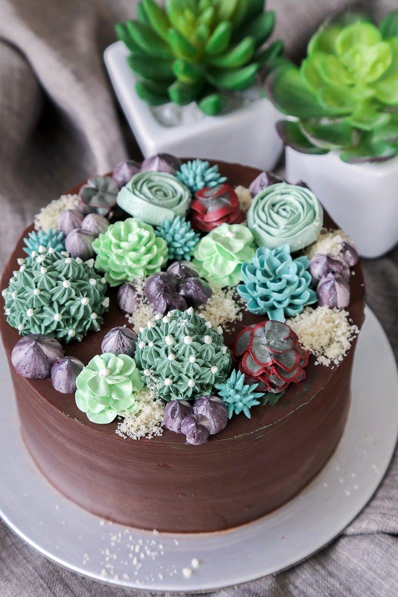 Succulent Garden Cake Decorating Class 2 New Baker S Brew Studio Pte Ltd