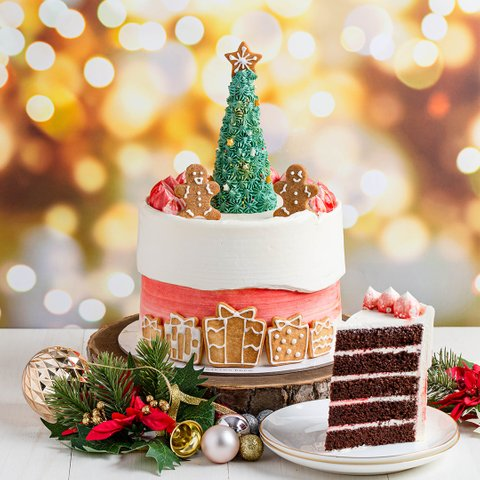 Peppermint Wonderland Cake 8
